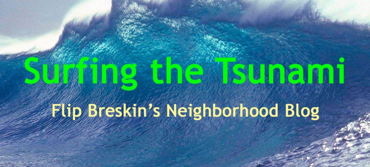 Surfing the Tsunami